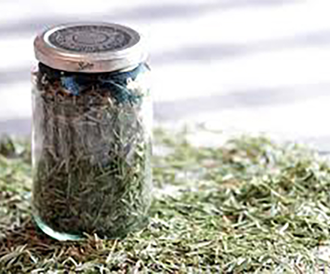 A jar full of Balsam needles set on a pile of loose Balsam needles.